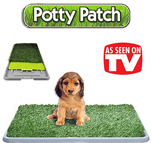 Potty patch litiere chien