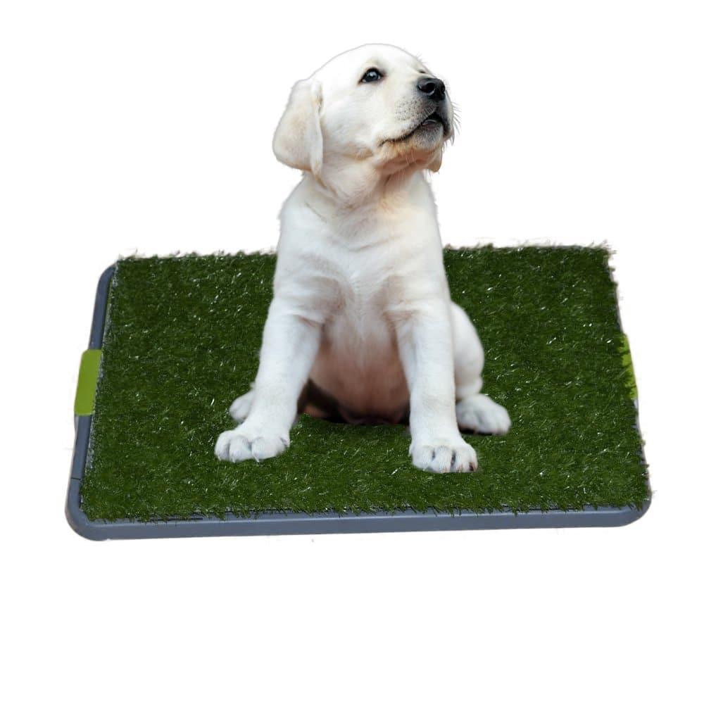 Litière d'intérieur pour chien avec gazon synthétique
