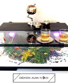 Table basse Aquarium et Terrarium