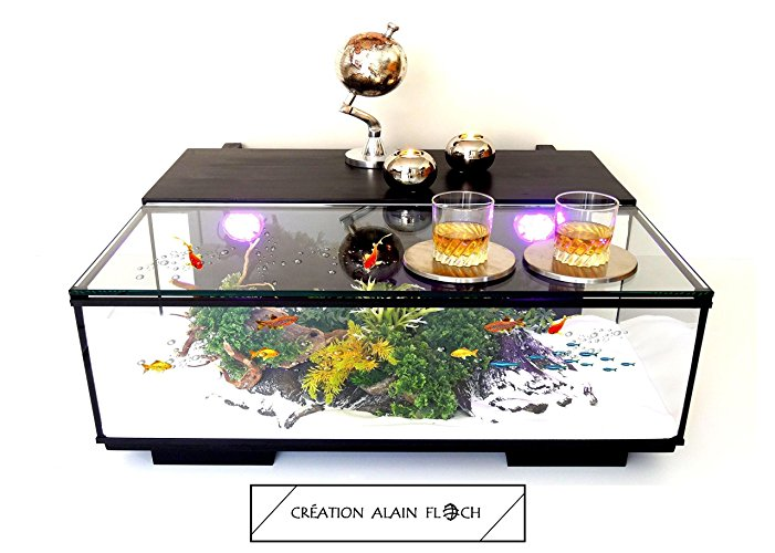 table basse aquarium et terrarium alain floch edition limit e. Black Bedroom Furniture Sets. Home Design Ideas